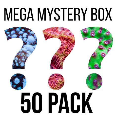 Tidal Gardens - Assorted Mystery Box - FREE SHIPPING!